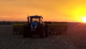 Coberturas para todos: en apenas una semana los productores argentinos vendieron 4,68 millones de toneladas de la cosecha 2019/20