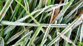 Quedan dos días más de heladas intensas: luego se prevé ascenso de las temperaturas
