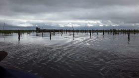 Declararon la emergencia agropecuaria para Mendoza y Río Negro: ampliaron la medida para zonas afectadas por inundaciones de Santiago de Estero