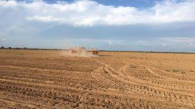 """Los precios de los futuros agrícolas argentinos comenzaron a reflejar el aumento de derechos de exportación contenidos en el proyecto de """"emergencia pública"""""""