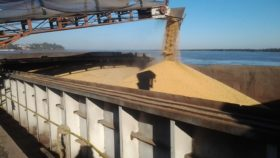 """Gracias al Matba Rofex los productores agrícolas sudamericanos pueden capturar el diferencial de precios de la soja generado por la """"guerra comercial"""""""
