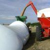 Argentina: se recuperan los precios de los futuros de soja luego del impacto bajista generado por los rumores sobre aumento de retenciones