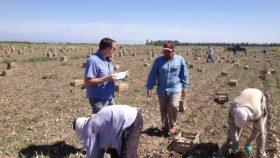 El gobierno nacional dispuso que todas las empresas agropecuarias deberán pagar un bono de 5000 pesos en tres cuotas