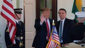 Bolsonaro cumple la promesa realizada a Trump: comienza a regir el cupo de importación de 750.000 toneladas de trigo libre de aranceles