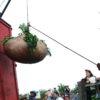 Paritarias rurales: el ajuste anual por inflación para los productores de yerba se determinó en 81%