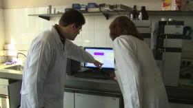 Argentina Impotencia Alimentaria: hace dos años que el Laboratorio Vegetal del Senasa no tiene un equipo para analizar proteínas en trigo