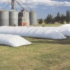 Liberaron nuevas compensaciones para sojeros del norte del país: hasta el momento se liquidó un 8,8% del monto comprometido
