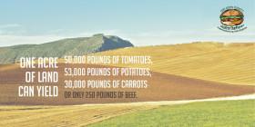 Una nueva barrera para-arancelaria viene en camino: Nature publica estudio que propone aplicar impuesto climático a la carne bovina para reducir el calentamiento global