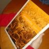 """Un manual publicado por el grupo Clarín asegura que la soja """"tiene consecuencias letales para el ecosistema agrícola"""""""